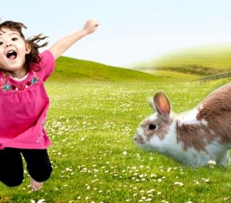 Build a Rabbit Habitat for Sensory Over Responders